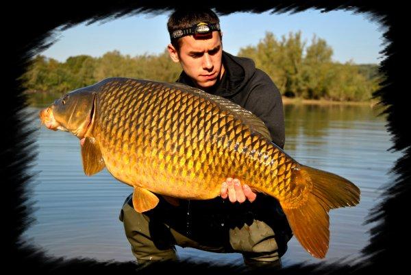 ~~>  !!!!!!!!!!   Week-end dans un plan d'eau a gros FISH     !!!!!!!!!!   <~~