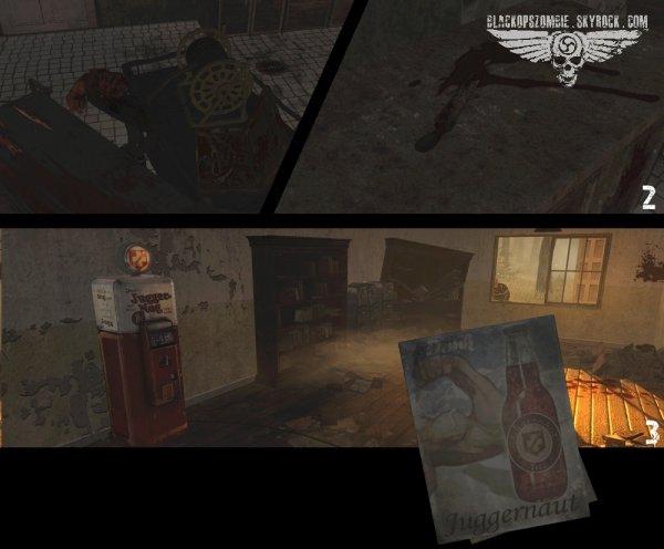 3 - Chapitre 2 : Viste � l'asile, Verruckt.