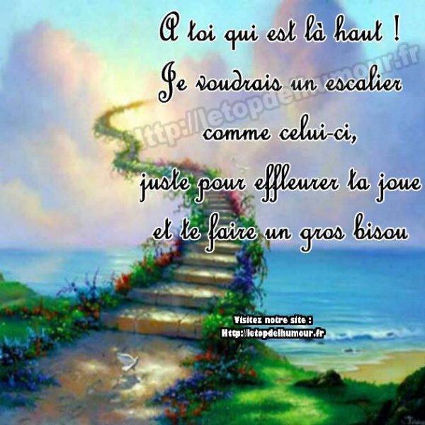 je suis triste ce soir, j'ai appris la mort de ma cousine ce jour,,,,,,,,qu'elle repose en paix