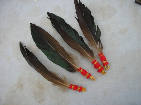 Blog de indianmarcel page 82 amerindien - Signification des plumes d oiseaux ...
