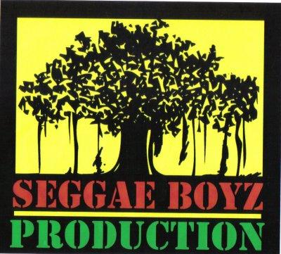 seggaeboyz  100 % tropikkal  roots