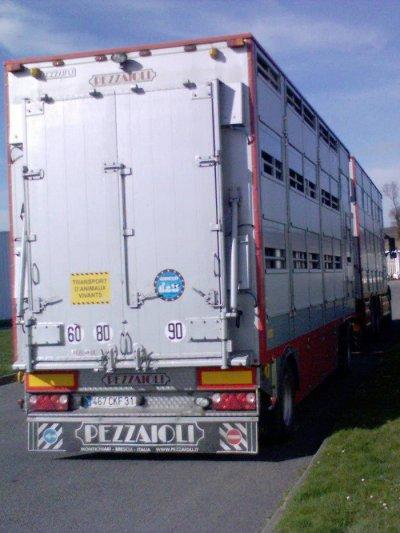 Soyez les bienvenus sur ce blog dédié au transport des animaux vivants.