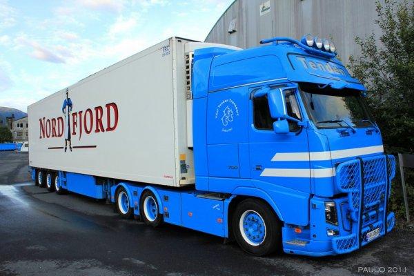 Tout le savoir faire de la compagnie norv gienne thor - Transporter un frigo couche ...