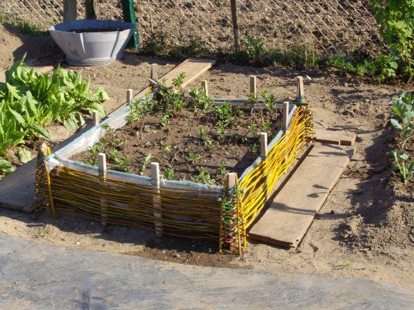 Articles de jardinfrou tagg s r alisation d 39 un for Carre potager en osier