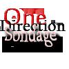 One-Direction-Sondage