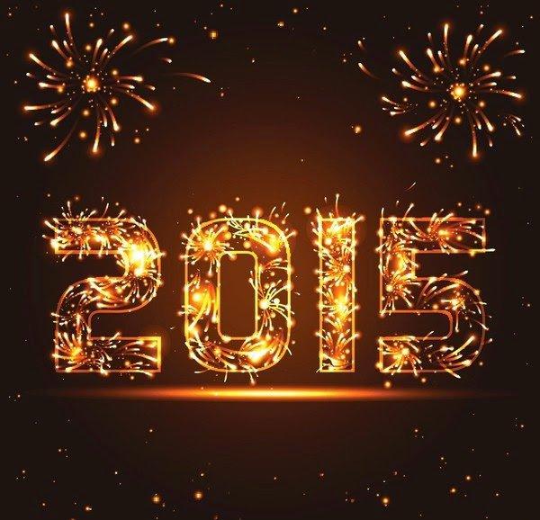 Bonne ann�e 2015 !!