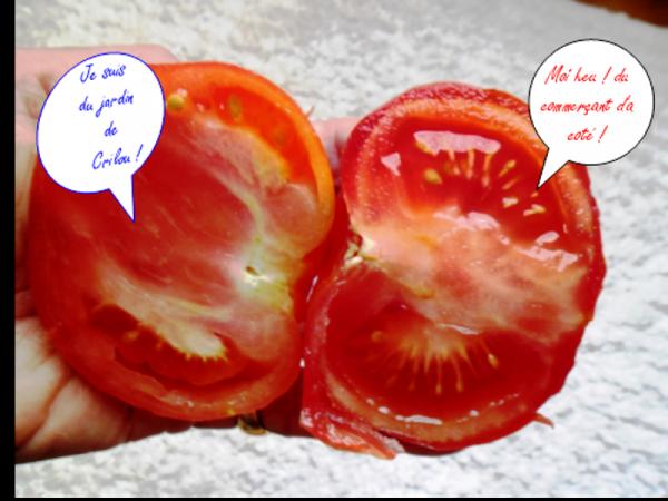 Astuce pour faire murir les tomates vertes la vie - Que faire avec des tomates du jardin ...
