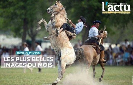 Magnifique ces chevaux