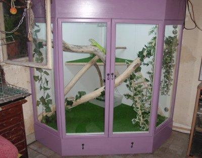 articles de myguane tagg s terrarium maison iguane. Black Bedroom Furniture Sets. Home Design Ideas