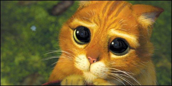 Shrek blog de paroles films - Ti biscuit shrek ...