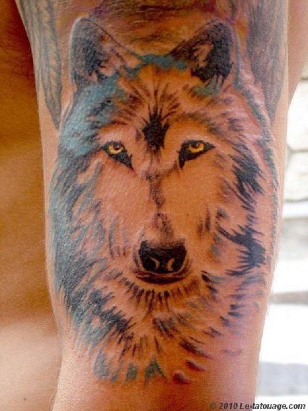 Tatouage t te de loup - Tatouage de loup ...