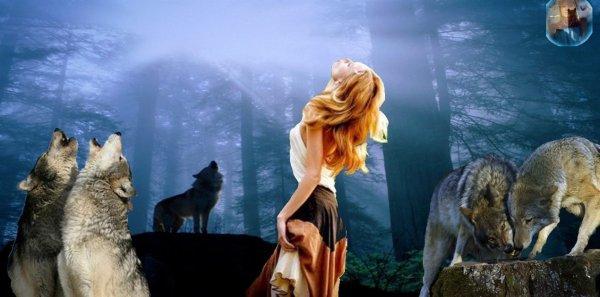Beaucoup d'intrigues et de questions sont pos�es sur le Loup  voi�i quelques questions-r�ponses