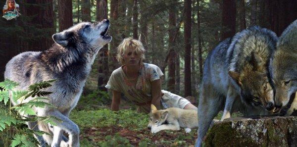 """Le monde selon les loups  """" article de  One Voice que j'ai trouv� sublime je vous le fais d�couvrir """" Tel est le monde selon les loups, fait de courage, d'amour et de beaut� :"""