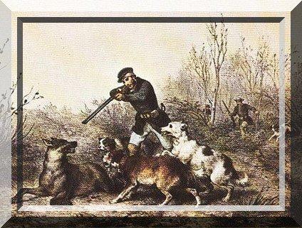 """De Vigny de nos jours """"La morts du Loup"""""""