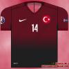 Turkiye Euro 2016