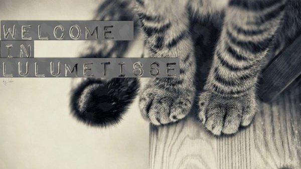 #Bienvenue ♥