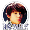 Bias-Gallery