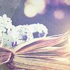 Books-Cupcakes