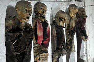 Les 8000 momies de palerme blog de rico9999 for Interieur d un couvent streaming