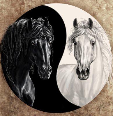 Cheval ying et yang mon univers - Dessin chevaux noir et blanc ...