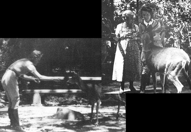 Les débuts dans la vie (de 1933 à 1940).