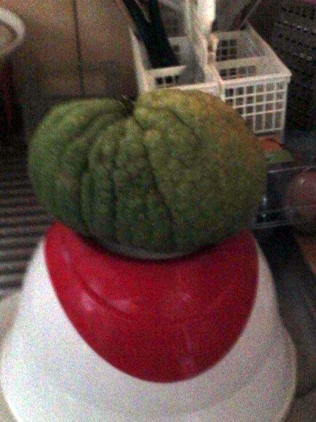 un drole de fruit