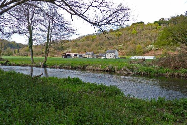Promenade au bois Boissel et quelques photos plus tard...
