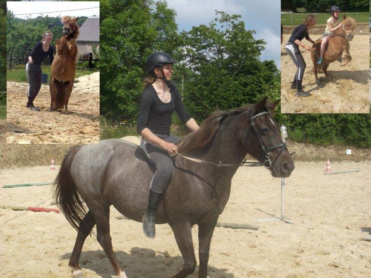 """""""Le cheval ma�tre dans cet art de la communication subtile, aide l'�tre humain � aller vers la d�couverte d'un monde merveilleux qui existe � l'int�rieur de sa personne."""""""