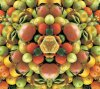 oranges-unies
