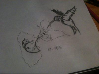 Gwada hibiscus colibri dessin spy k - Dessin d hibiscus ...