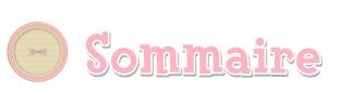 Mon blog-histoire AC