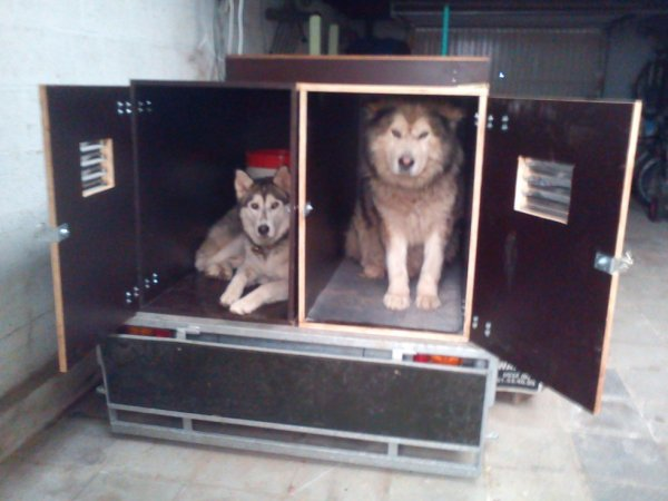nouvelles caisses chiens pour remorque double essieux blog de stephaneinter. Black Bedroom Furniture Sets. Home Design Ideas