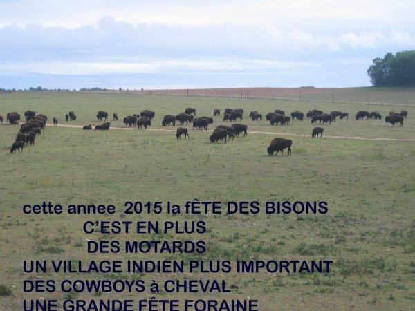F�TE DES BISONS 13 ET 14 JUIN 2015
