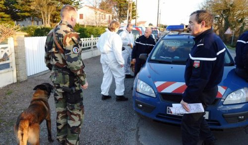 escorte ce deplace saint nazaire