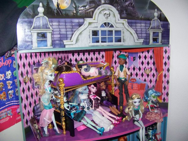 ma maison avec ma collection de high d de my doll