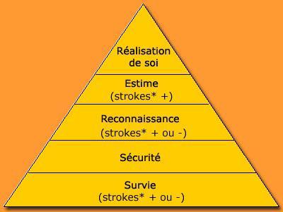 Pouvoir horizontal association contre pouvoir vertical - Dessin de pyramide ...