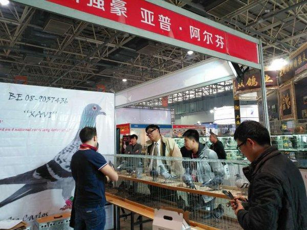 A LANGFANG EN CHINE