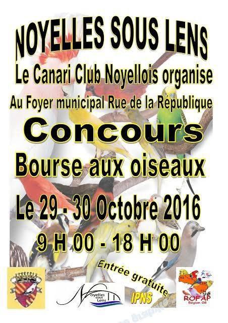 Concours de Noyelle sous Lens