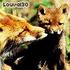 louval30