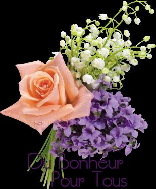 ✿ڰۣ✿ڰۣ✿ ♥♫ Bonjour ✿ڰۣ✿ڰۣ✿ ♥♫ le temps des lilas joli po�me et m�lodie✿ڰۣ Amiti�✿ڰۣ✿ ♥♫