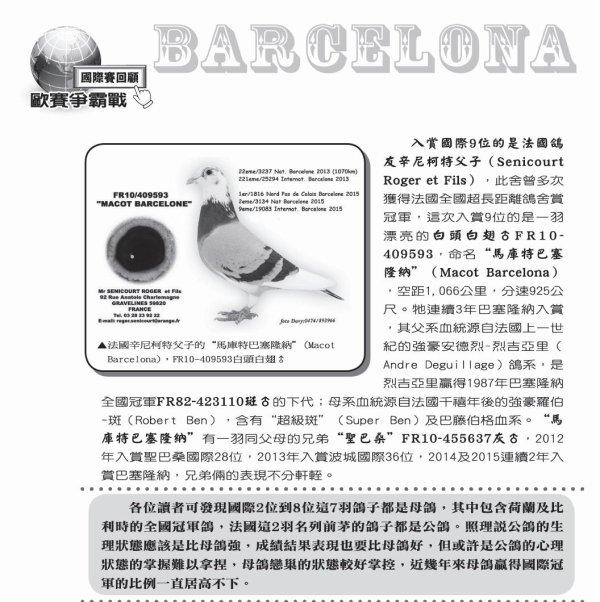 """LE """"MACOT BARCELONE""""  A L HONNEUR SUR LE JOURNAL COLOMBOPHILE DE TAIWAN SUR L'EDITION  DE BARCELONE 2015"""