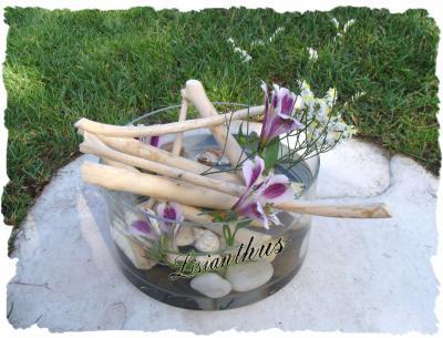 Bois flott s coquillages art floral bouquet for Vase avec bois flotte