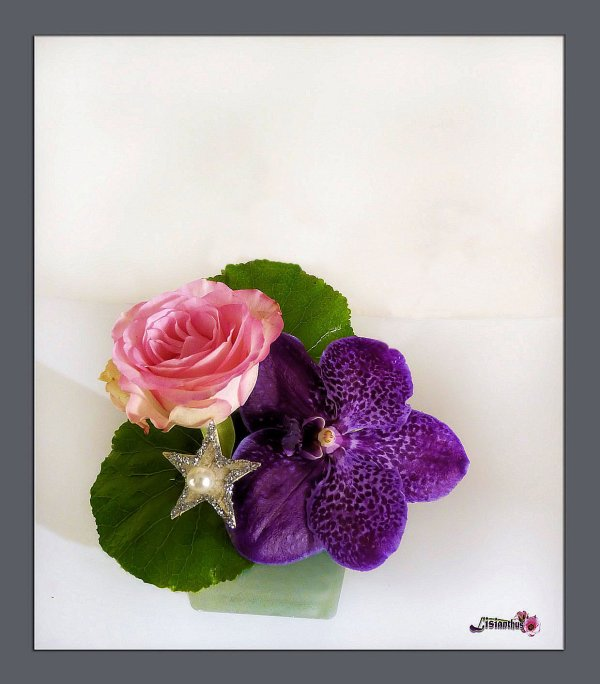 la rose & l'orchidée
