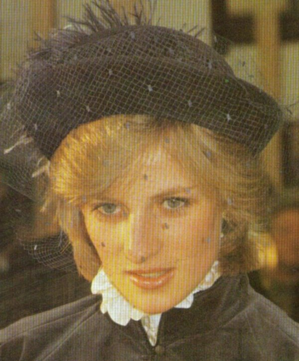 Diana princesse du pays de Galles upskirt