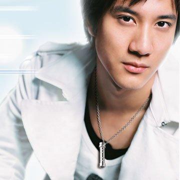 oOo Wang Lee Hom oOo