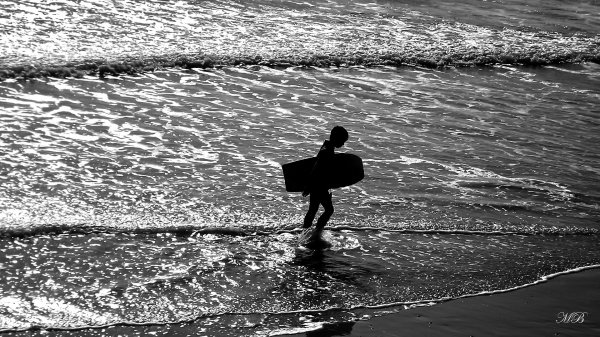 """Seashore"" #260"