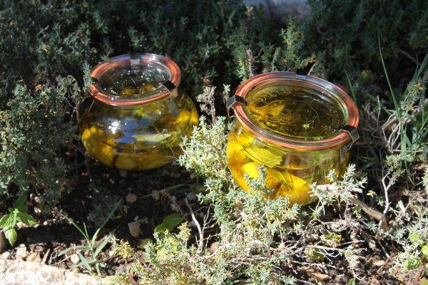 Ch�vres � l'huile d'olive et aux herbes