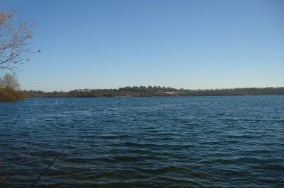 petite photo du lac d Arjuzanx