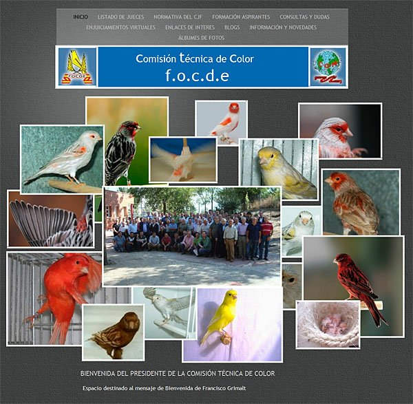 Website de la Comisión Técnica de Color/FOCDE - Site de la Commission Technique des Canaris Couleurs/FOCDE