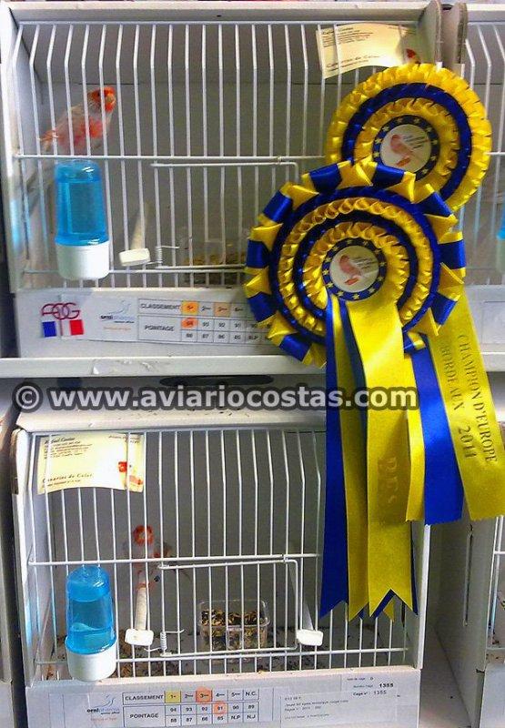 Resultados Concurso Internacional COM Bordeaux 2011 + Campeonato Europeo del canario Jaspe